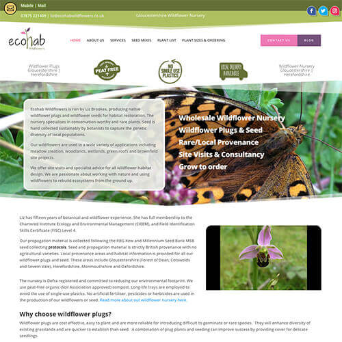 Ecohab Website